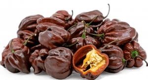 Semi di Habanero Chocolate